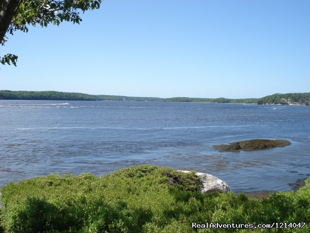 View to the North - Maine Coast Vacations Scenic White Rocks Cottage