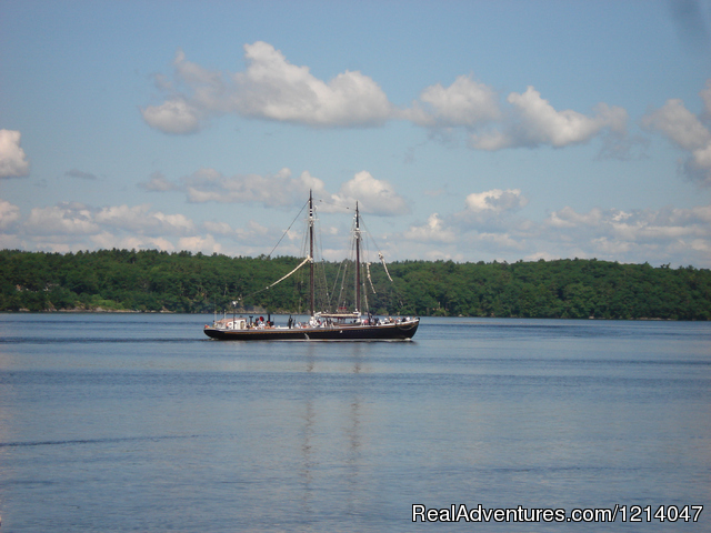 Tall Ship Sailing Past White Rocks - Maine Coast Vacations Scenic White Rocks Cottage