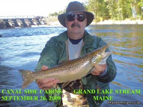 - The Best of Grand Lake Stream is Canal Side Cabins