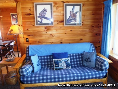 Cozy Moose Cabins, Greenville Maine Rentals - Moosehead Cabin Adventure - Lake, Mountain & Moose