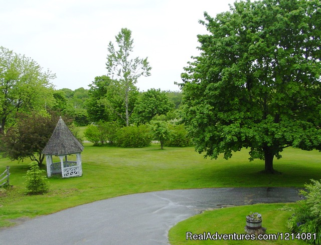 Front Yard - Apartment rental on 9 acres close to ocean