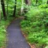 Riverside walking path
