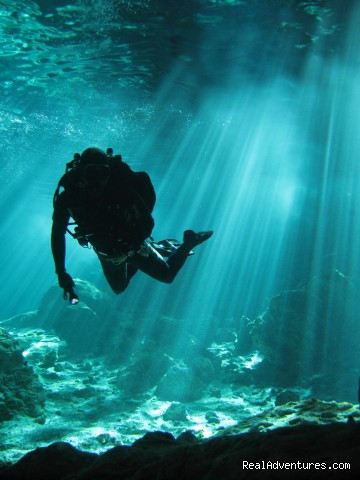 Image #2 of 3 - Ecodiving Tours Playa del Carmen