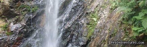 One of the local waterfalls near Waisalima Beach Resort - Waisalima Beach Resort & Dive Centre