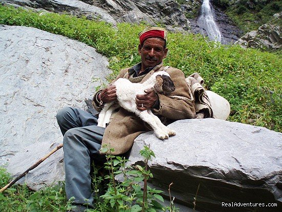 local Gaddi shepherd | Image #18/19 | Himalayan nature resort at Eagles Nest India