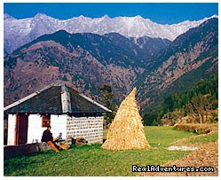 nearby Naddi Village - Himalayan nature resort at Eagles Nest India