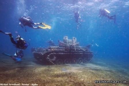 diving (#8 of 14) - Discover Jordan