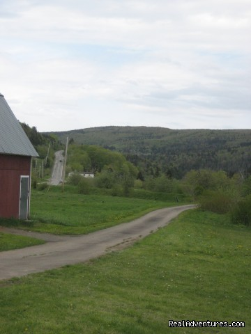 Driveway to Route 395 - Farmhouse Vacation Rental in Cape Breton
