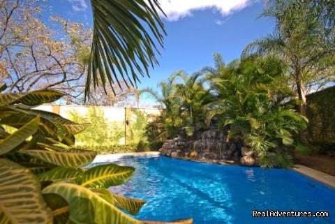 - Costa Rica Langosta Tamarindo Resort !!!!!