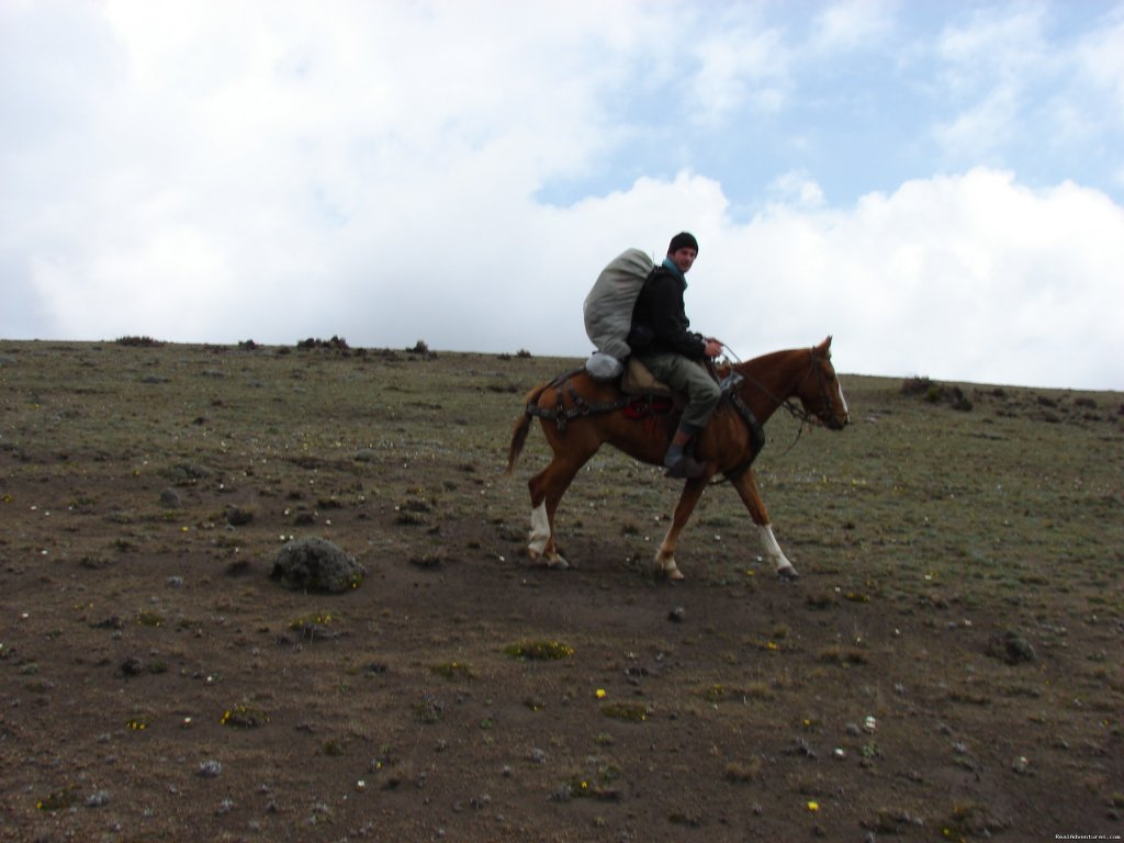 Image #5/9 | High Altitude Horseback Riding