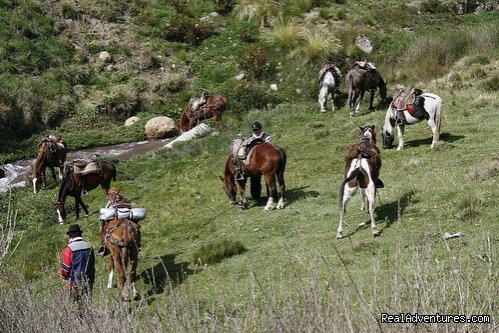 Image #6/9 | High Altitude Horseback Riding