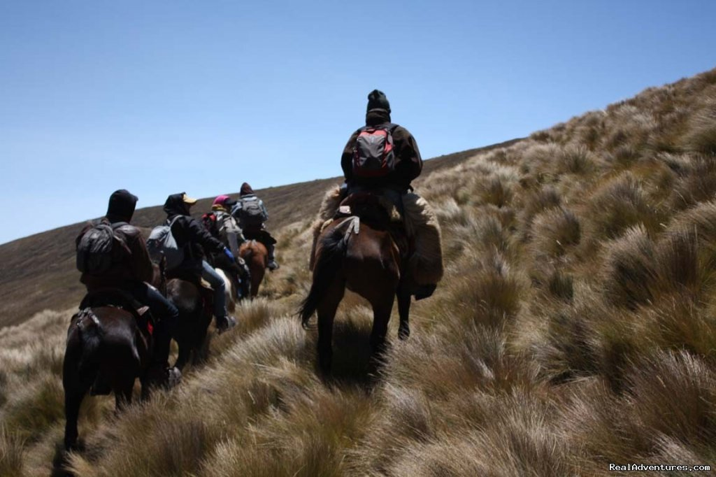 Image #7/9 | High Altitude Horseback Riding