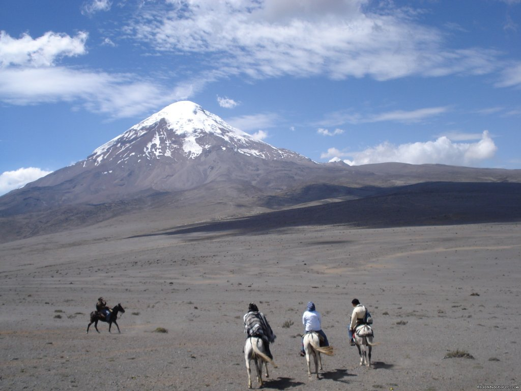 Image #3/9 | High Altitude Horseback Riding