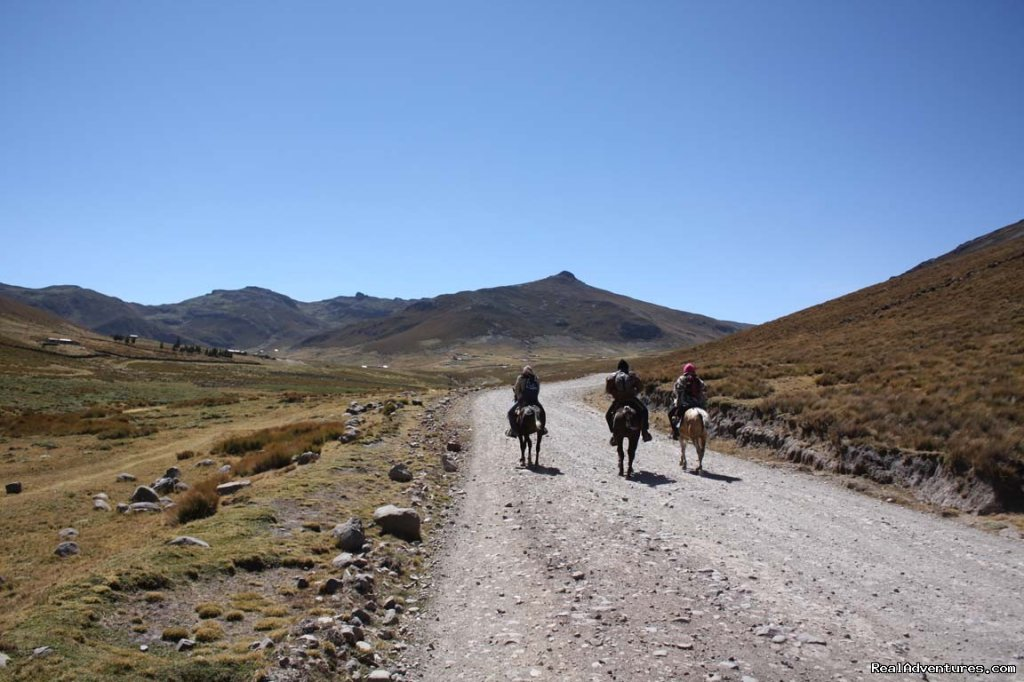 Image #8/9 | High Altitude Horseback Riding