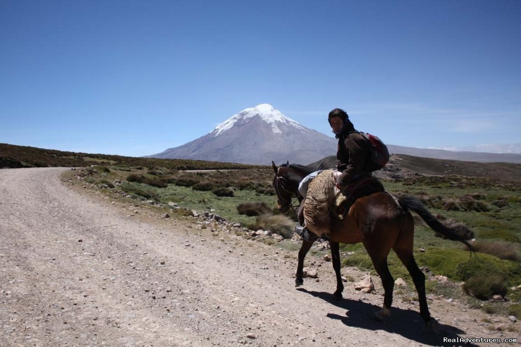 Image #9/9 | High Altitude Horseback Riding