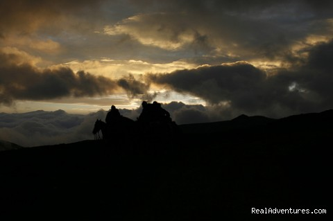 Image #2 of 9 - High Altitude Horseback Riding