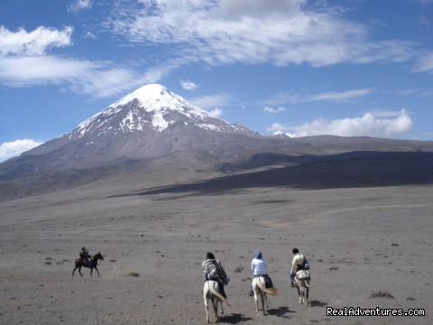 - High Altitude Horseback Riding
