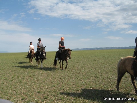 Altaimongoliatravel: Travels and Tours in Mongolia