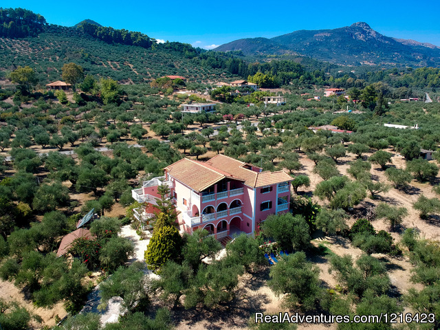 Self catering (#4 of 26) - Zakynthos Holidays/Arazzo Villa rental