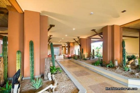 - Elegant & Stylish Condo Steps from the Ocean