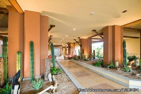 Image #6/11 | Casa Oasis: elegant, stylish, modern, easy to cons