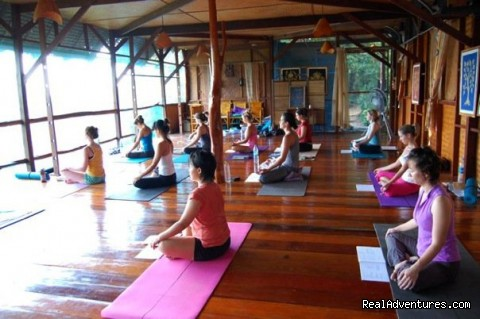 Image #5 of 12 - All Yoga teacher trainings now in Thailand