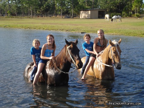 Horses love to swim (#3 of 9) - Horseback Riding Camp & Horseback Riding Lessons