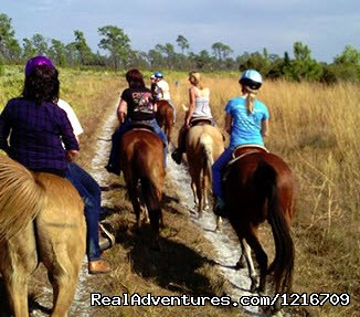 Horseback Riding Camp & Horseback Riding Lessons Fellsmere, Florida Horseback Riding