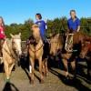 Horseback Riding Camp & Horseback Riding Lessons