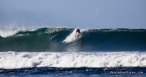 Image #21 of 24 - Surf Simply's Luxury Surf Coaching Resort