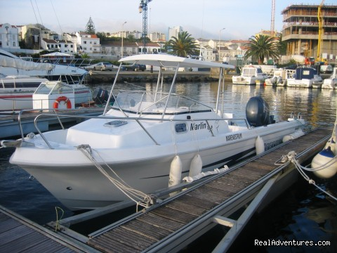 - Azores Sport Fishing & shore excursions tours.