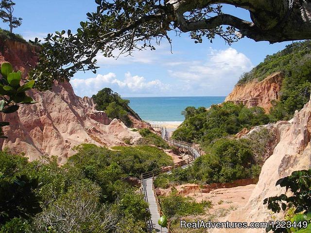 Image #7 of 21 - Golfer Dream Villa on Brazil's Terravista course
