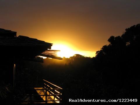 Image #14 of 21 - Golfer Dream Villa on Brazil's Terravista course