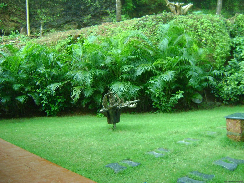 The greenery surrounding the house | Image #15/20 | Ocean Hues Beach House - Seaside Holiday in Kerala