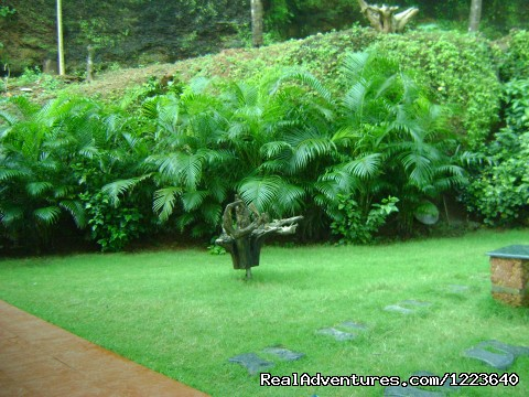 Ocean Hues Beach House - Seaside Holiday in Kerala The greenery surrounding the house