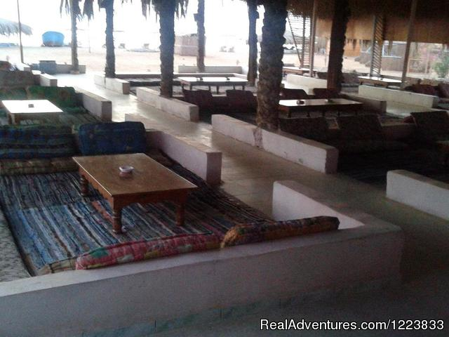 - Barracuda camp, bungalows on the beach,