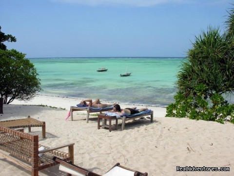 Zanzibar Holiday: zanzibar beache