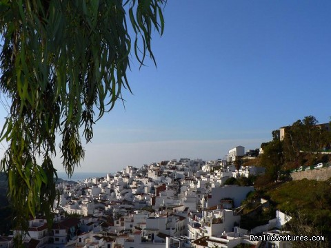 The view from Casa Cebadillas - Cooking & Wine Classes in Costa del Sol, Andalucia