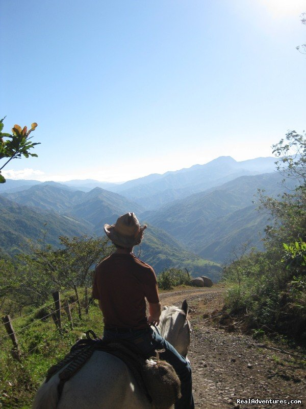 We are a horse farm  in Costa Rica offering adventurous  horseback riding riding vacations with daily horsebackriding trips as well as multi day progressive horseback rides through the mountains. Our horses are trained with natural horsemanship.