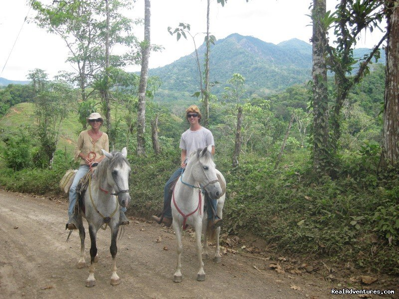 Along the way on the trek to the beach. | Image #7/11 | Adventure Trail Rides for the Experienced Equestri