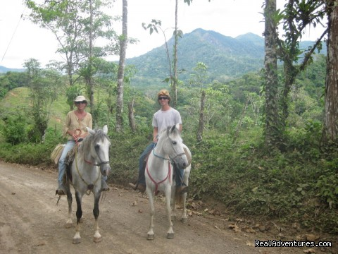 Along the way on the trek to the beach. - Adventure Trail Rides for the Experienced Equestri