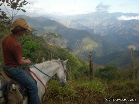 Beautiful Views on trails near the farm. - Adventure Trail Rides for the Experienced Equestri