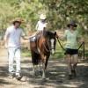 Pony ride.
