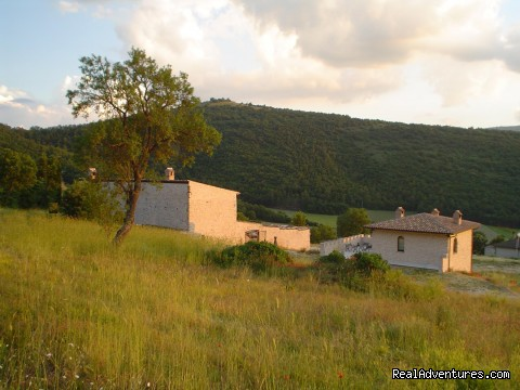 Meadow Around - Corte Belvoir Guest House & Romantic Inn