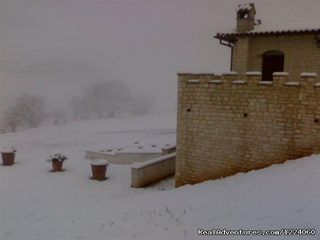 Winter - Corte Belvoir Guest House & Romantic Inn