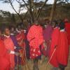 Masai culture safari