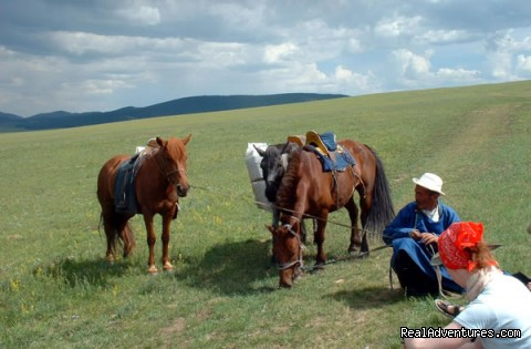 Happy Mongolia tours