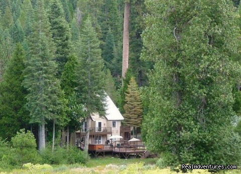 Closest B&B Lodging to Yosemite's South Gate