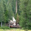 Closest B&B Lodging to Yosemite's South Gate Fish Camp, California Bed & Breakfasts