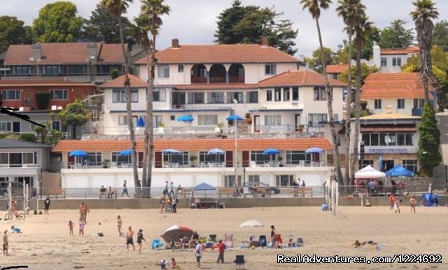 An oasis of serenity on the Santa Cruz Beach
